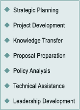 Strategic Planning, Project Development, Knowledge Transfer, Proposal Preparation, Policy Analysis, Technical Assistance, Leadership Development